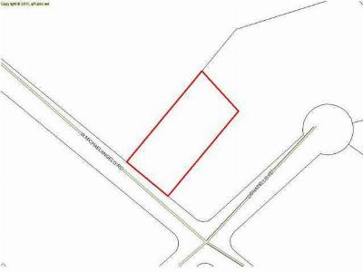 Residential Lots & Land For Sale: LOT 16 Michaelangelo Road