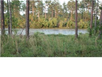 Residential Lots & Land For Sale: LOT 11 Lake Rosemary Court