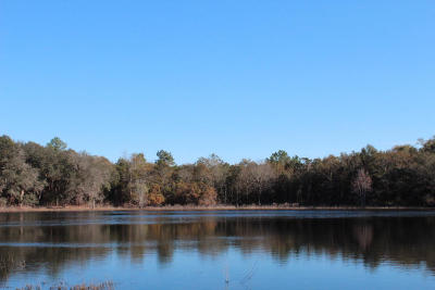 Defuniak Springs Residential Lots & Land For Sale: 42AC Co. Hwy. 185