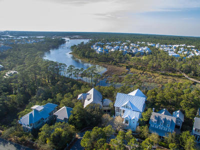 Alys Beach, Rosemary Beach, Santa Rosa Beach, Seacrest, Watersound Single Family Home For Sale: 19 Dandelion Drive