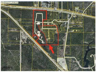 Defuniak Springs Commercial For Sale: Wildwood Lakes Drive