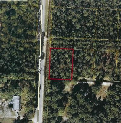 Residential Lots & Land For Sale: Nellie Drive
