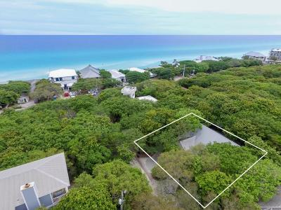 Seagrove Beach, Seagrove, Seagrove 1st Addn, Seagrove 3rd Add, Seagrove 3rd Addition, Seagrove 3rd Addn, Seagrove 5th Addn, Seagrove By The Sea I, Seagrove Highlands Single Family Home For Sale: 41 Azalea Street