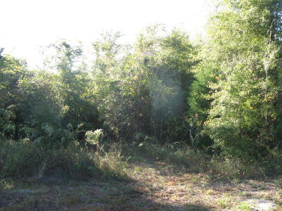 Marianna Residential Lots & Land For Sale: 01 Belaire Drive