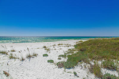 Santa Rosa Beach Single Family Home For Sale: 56 Deer Lake Beach Drive