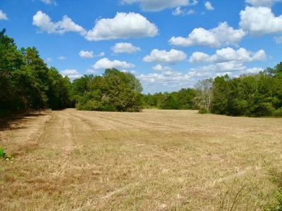 Westville FL Farm For Sale: $299,000