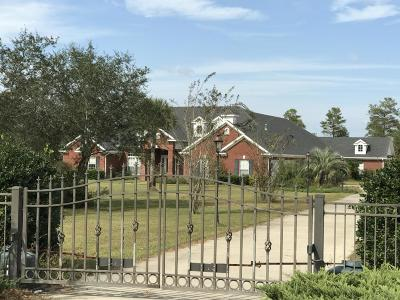 Freeport Single Family Home For Sale: 486 Coastal Breeze Drive