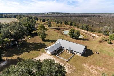 Defuniak Springs Farm For Sale: 1015 T R Miller Road