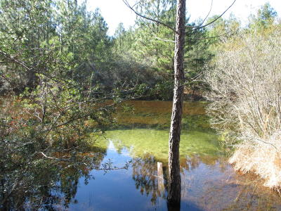 Defuniak Springs FL Residential Lots & Land For Sale: $45,000