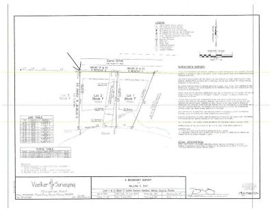 Freeport Residential Lots & Land For Sale: 81 Carol Drive