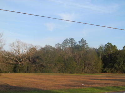 Paxton FL Residential Lots & Land For Sale: $275,000