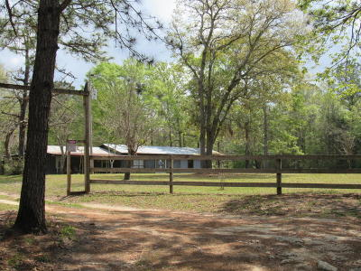 Holmes County Single Family Home For Sale: 2375 Tram
