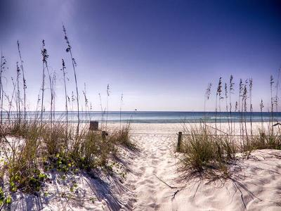 Panama City Beach, West Panama City Beach Single Family Home For Sale: 17885 Front Beach Road