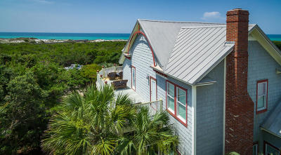 Inlet Beach Single Family Home For Sale: 236 W Park Place Avenue