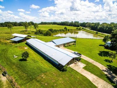 Westville FL Farm For Sale: $475,000