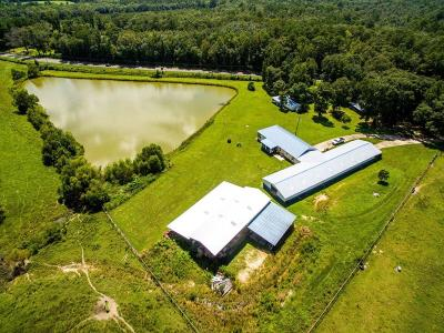 Holmes County Single Family Home For Sale: 1455 Hwy 160