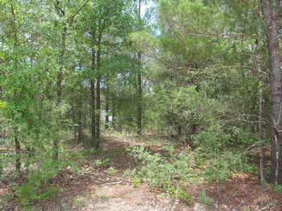 Defuniak Springs Residential Lots & Land For Sale: Lot 13&14 Juniper