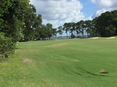 Destin Residential Lots & Land For Sale: Lot 1 Emerald Bay Drive
