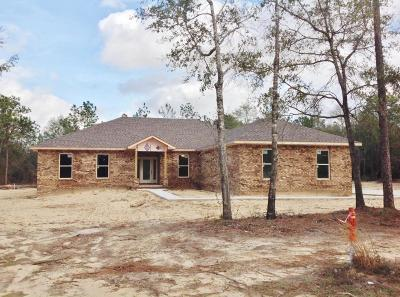 Crestview Single Family Home For Sale: 5205 Mt Olive Road