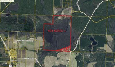 Bay County, Walton County, Washington County Residential Lots & Land For Sale: 400AC T R Miller Road