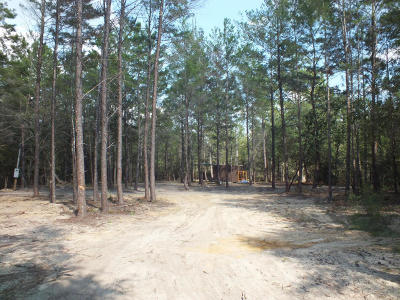 Defuniak Springs FL Residential Lots & Land For Sale: $50,000