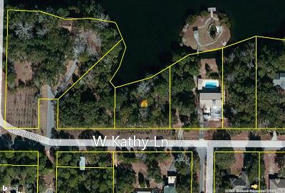 Freeport Residential Lots & Land For Sale: W Kathy Lane