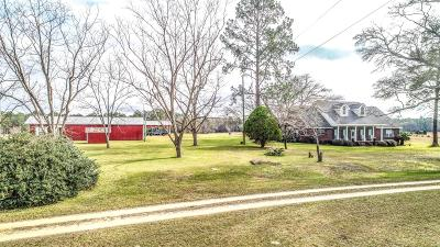 Baker Single Family Home For Sale: 7995 Lonnie Booker Road