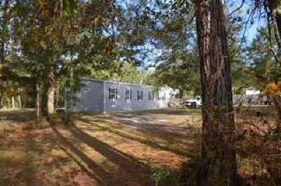 Bay County, Walton County, Washington County Single Family Home For Sale: 197 Caswell Branch Road