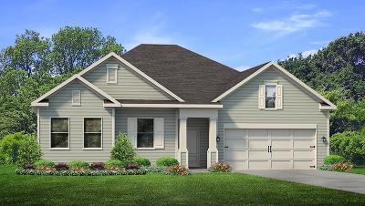 Santa Rosa Beach Single Family Home For Sale: 590 Las Roblas Grande Drive