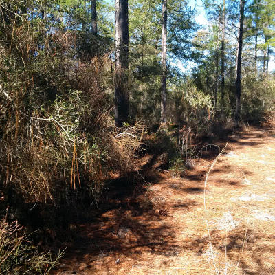 Defuniak Springs FL Residential Lots & Land For Sale: $6,000
