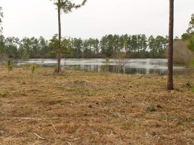 Defuniak Springs FL Residential Lots & Land For Sale: $17,900
