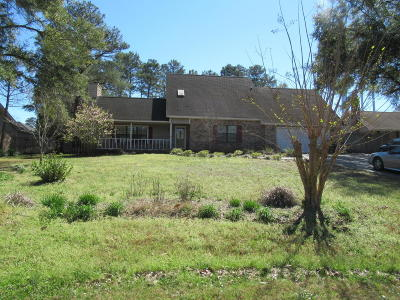 Niceville Single Family Home For Sale: 317 Ruckel Drive
