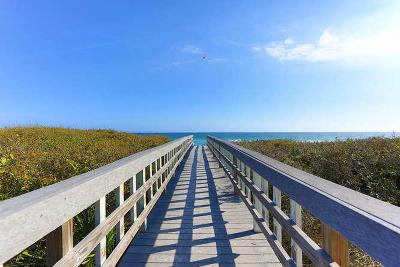 Santa Rosa Beach Single Family Home For Sale: 24 Seashore Circle