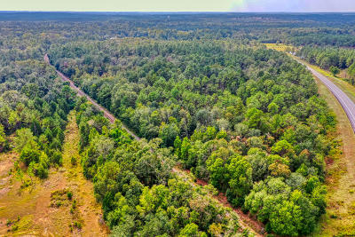Holmes County Residential Lots & Land For Sale: 24 Acres Hwy 90