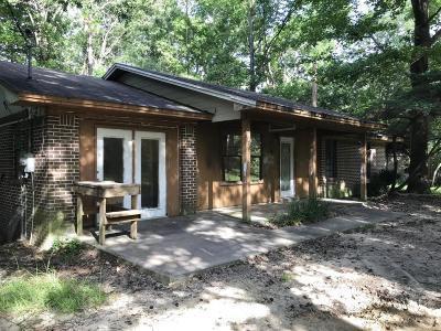 Freeport Single Family Home For Sale: 4871 Black Creek Road