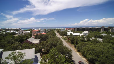 Inlet Beach Single Family Home For Sale: 128 Clareon Drive