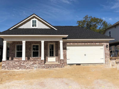 Niceville Single Family Home For Sale: 802 Raihope Way