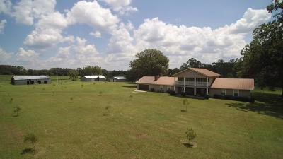 Jackson County Single Family Home For Sale: 4858 Cliff Road
