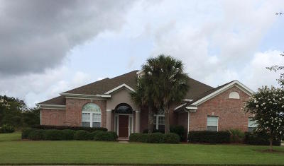 Freeport Single Family Home For Sale: 243 Brushed Dunes Circle
