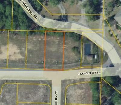 Residential Lots & Land For Sale: Lot 6 Tranquility Lane