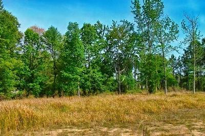 Holmes County Residential Lots & Land For Sale: 7.3 Ac Padgett Farm Road