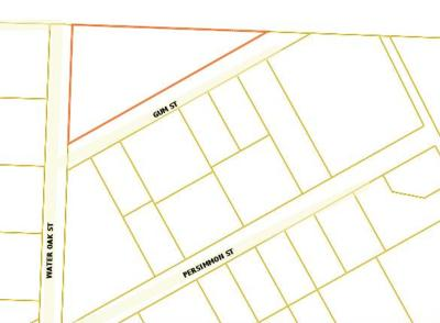 Freeport Residential Lots & Land For Sale: xx Gum Street