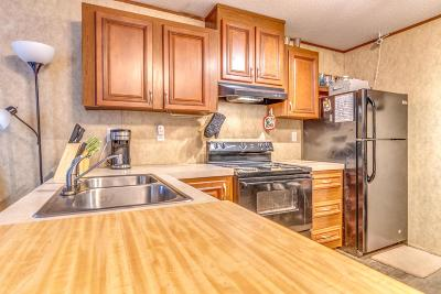 Single Family Home For Sale: 2991 Crittenden Drive