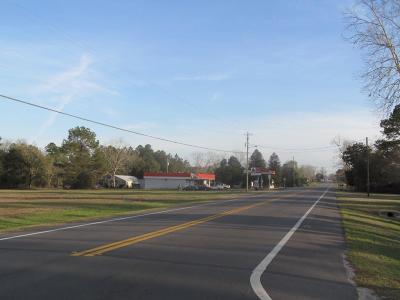Defuniak Springs Commercial For Sale: 2AC N 331 Highway
