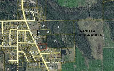 Paxton FL Residential Lots & Land For Sale: $99,900