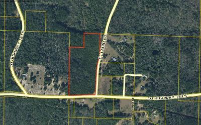 Walton County Residential Lots & Land For Sale: Co Hwy 280