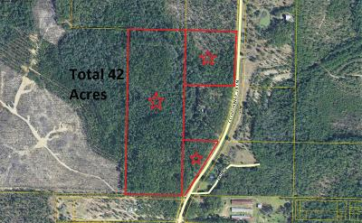 Walton County Residential Lots & Land For Sale: 42 Ac N Hwy 183