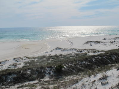 Old Florida Beach Single Family Home For Sale: 209 Old Beach Road