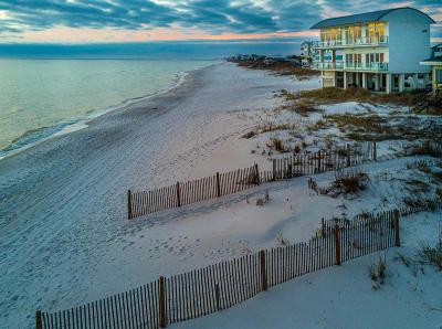 Inlet Beach Single Family Home For Sale: 36 Walton Magnolia Lane