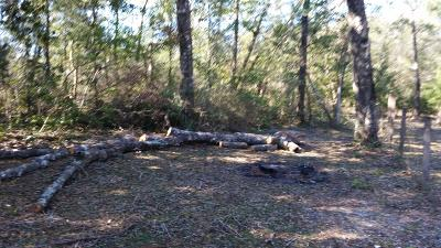 Freeport FL Residential Lots & Land For Sale: $19,000